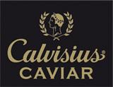 calvivinius